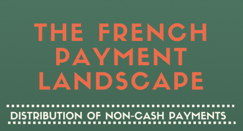 The French payment landscape (March 2016)